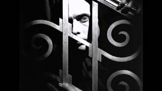 Watch Peter Murphy Just For Love video
