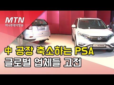 기회에 땅에서 죽음의 땅이 된 중국 자동차 시장…판매량 절반 급감 PSA는 공장 문닫아/ 머니투데이방송 (뉴스)