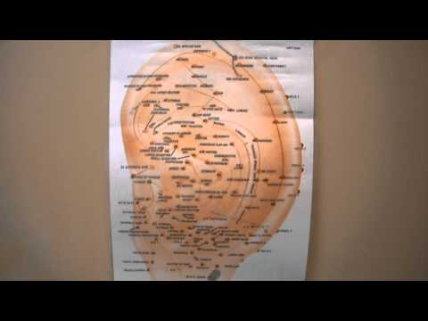 Overview on Acupuncture Points Meridians Qi Chi Auricular Traditional Chinese Medicine TCM Asian