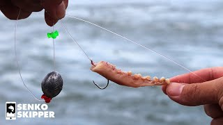 THIS RIG CATCHES SO MANY FISH! Using Fishing Bait as a Lure