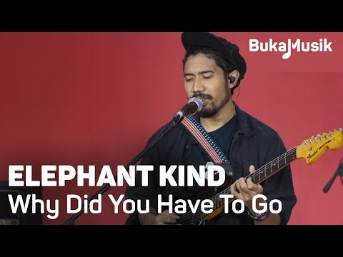 Elephant Kind - Why Did You Have To Go (with Lyrics) | BukaMusik