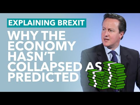 Remainers: Why Hasn't the Economy Collapsed Yet? – Brexit Explained