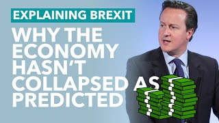 Remainers: Why Hasn't the Economy Collapsed Yet? - Brexit Explained