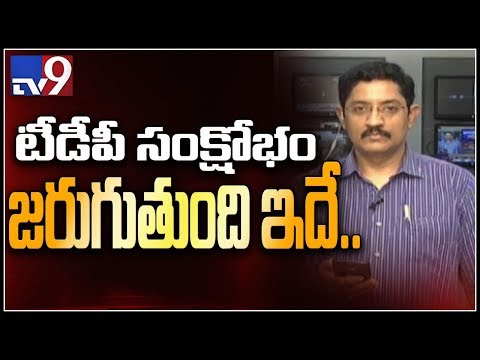 2 more TDP MPs Sitamahalakshmi, Kanakamedala likely to join BJP ; Muralikrishna on TDP crisis - TV9