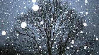 Selim Palmgren ~ Snowflakes  Op. 57
