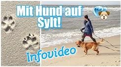 Mit HUND auf SYLT / Infovideo