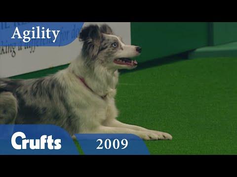 Agility - Championship Final 2009 | Crufts Dog Show
