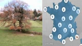 بالفيديو.. مذيعة تقدم النشرة الجوية عارية لوصول فرنسا للمونديال
