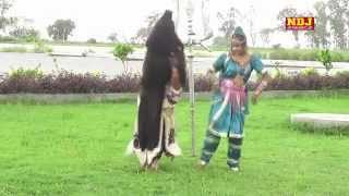 Gora Meri Sunle Ne Ek Baat | Religious Haryanvi Shiv Bhajan I Devotional Song I Haridwar Special