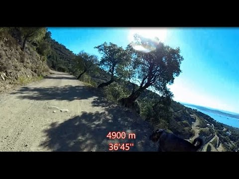 Virtual Run  11K 8 kph Saint Tropez FRANCE
