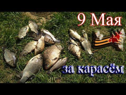 Ловля карася в мае. Рыбалка на закидухи