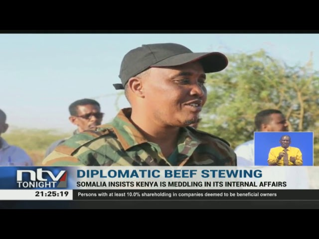 IGAD dismisses Somalia's claims that Kenya is funding militia