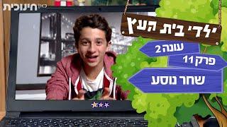 ילדי בית העץ עונה 2 | פרק 11 - שחר נוסע