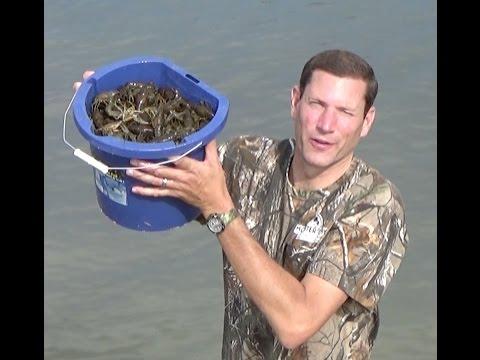 Road-trip Crawfishing Strawberry Reservoir Utah And Crayfish Boil