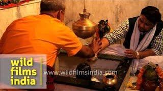 Hindu devotees perform purification ritual on Shiv Ling phallus