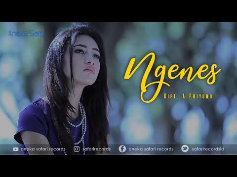 Lagu Terbaru Banyuwangi   Ngenes - Denik Armila ( Official Music Video ANEKA SAFARI )