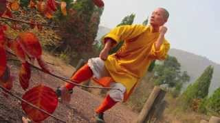 少林传统拳 - Shaolin Traditional Boxing