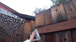 Американская бытовуха - ремонт калитки в Кремниевой Долине