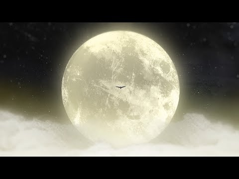 flica - Listener (Official Music Video)