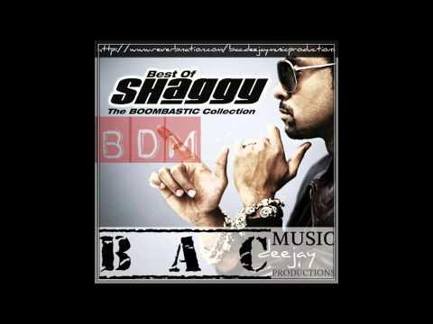 Shaggy-Mr Boombastic Breakbeat version (BDM 121 PRO)