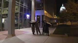 """""""Beetle Birds"""" Stilt Walkers in Madison"""