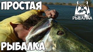 Русская Рыбалка 4 Как быстро прокачаться до 20 уровня / #9 Проверяем кусочки рыбы, Берем 18 уровень