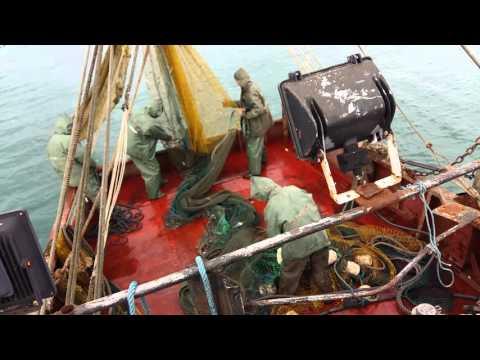рыбалка в абхазии на реках видео