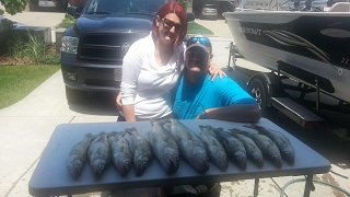 How to Fillet a Walleye Lake Erie Style
