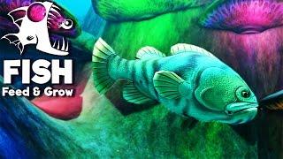 FEED E GROW FISH #23  = O GOLIAS DO ALTO MAR (gameplay PT/BR)