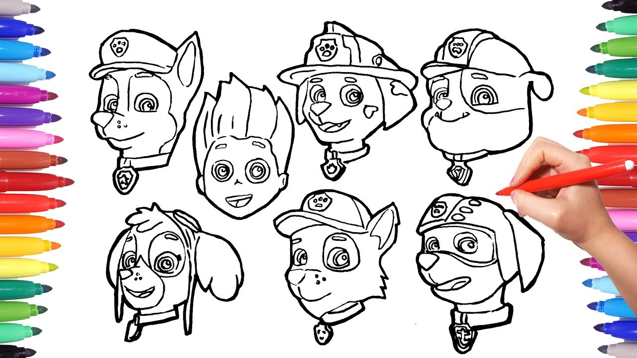 This is a graphic of Current Skye Paw Patrol Drawing