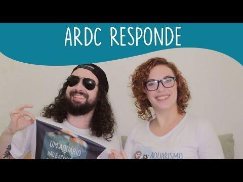 ARDC Responde #1- Especial 3k - Peixes para iniciantes, tratamento de troncos, aquário marinho