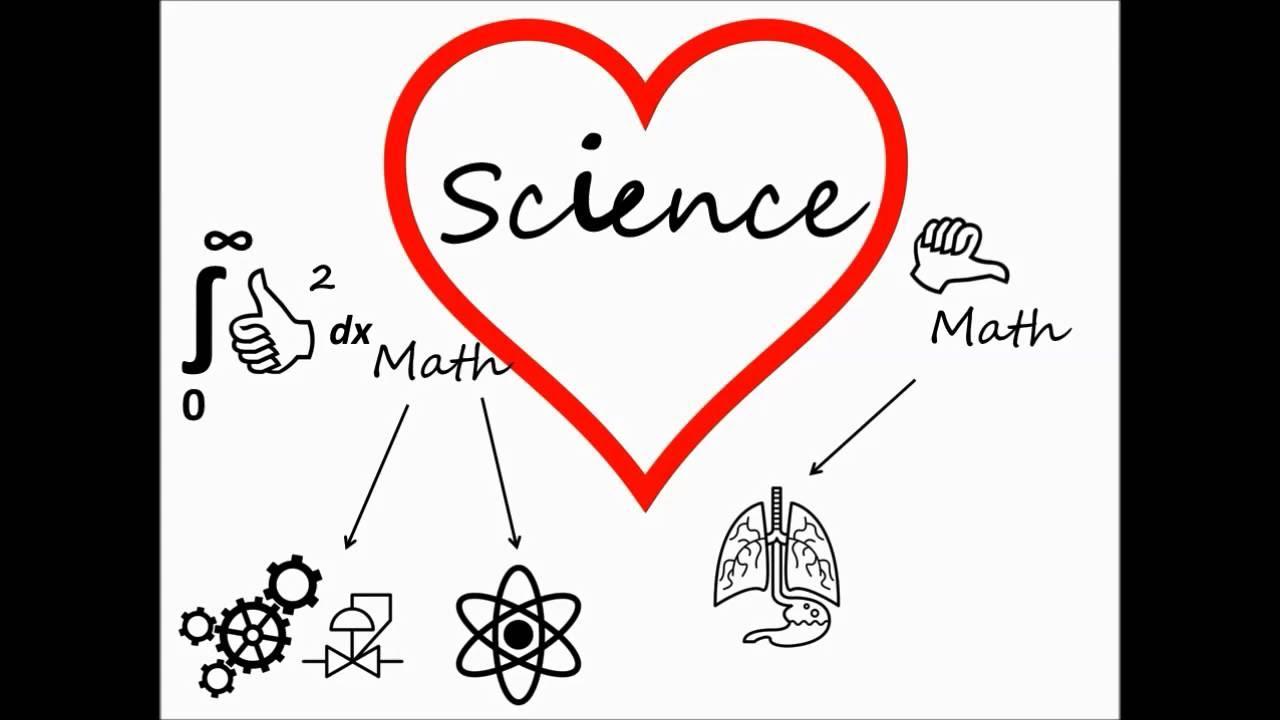 math meets biology in