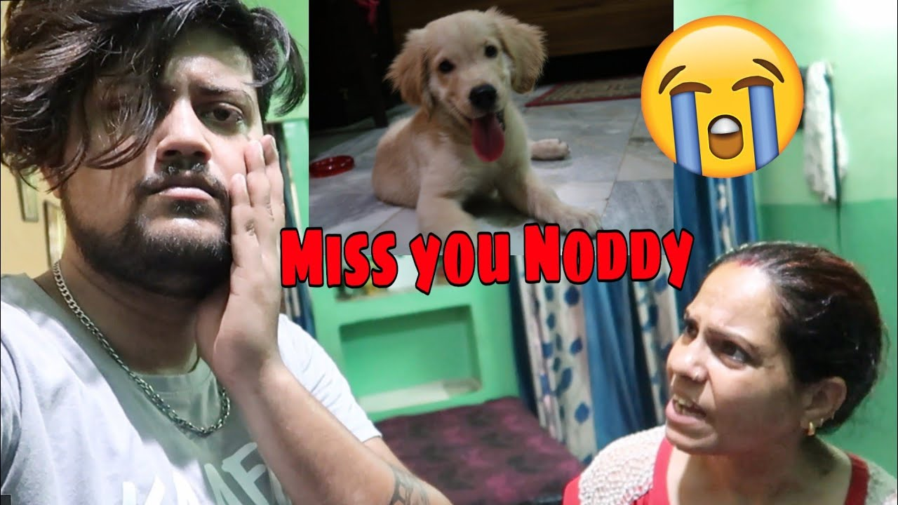 I SOLD MY DOG😓😭 | BYE NODDY