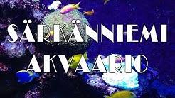 Särkänniemi Akvaario