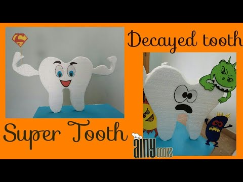 DIY Model Of Super Tooth And Bad Tooth _ Science Project
