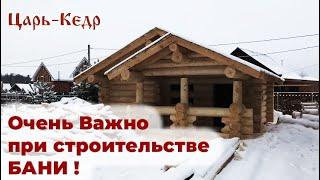 видео Строительство дома из кедра