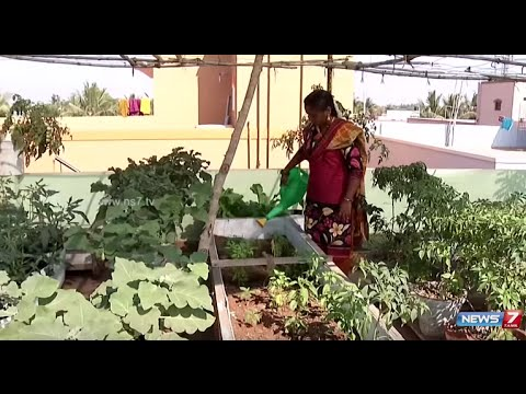 Make The Best Of Your Terrace By Creating A Garden | Poovali | News7 Tamil