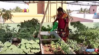 Terrace vegitable garden mattuppavu krishi for Terrace krishi