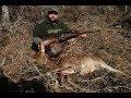"""CZ550 Lux 7x57 mm Mauser """"Jambo"""" Armeria Magno 13"""