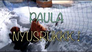UDAH GA BERANI, TETEP DIPAKSA MAIN SKI !! PAULA NYUNGSEP KE NET !!