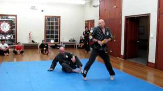 The Power of Hapkido (Version 1)