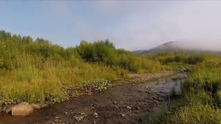 Верхів'я річки Косьвы