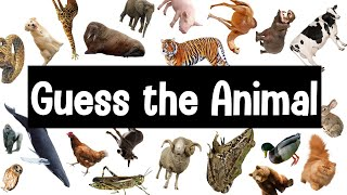 Guess the Animal Sound Game | 30 Animal Sounds Quiz | Wildlife Trivia
