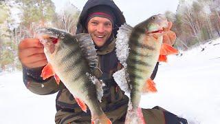 ЗА ТАКИМИ КАБАНАМИ СЮДА СТОИЛО ЕХАТЬ Рыбалка 2020 в диком заливе КВХ