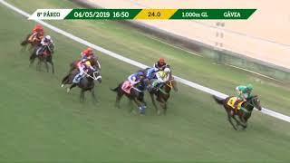 Vidéo de la course PMU PREMIO GARBOSA BRULEUR