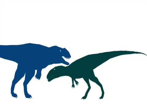 ASDC - Carcharodontosaurus vs Mapusaurus