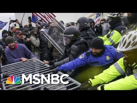 After Trump, Preventing Future Danger To The Republic | Morning Joe | MSNBC