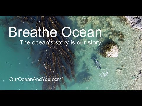 Breathe Ocean. The