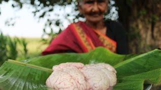 Bheja Fry Recipe || Yummy Goat Brain Fry By Granny || Country Foods