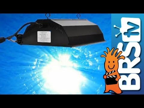 Using Technology To Emulate The Sun And Reef - EP 1: Aquarium Lighting